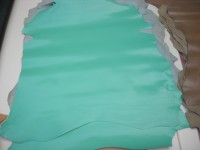Chevreaux mint (NAC)